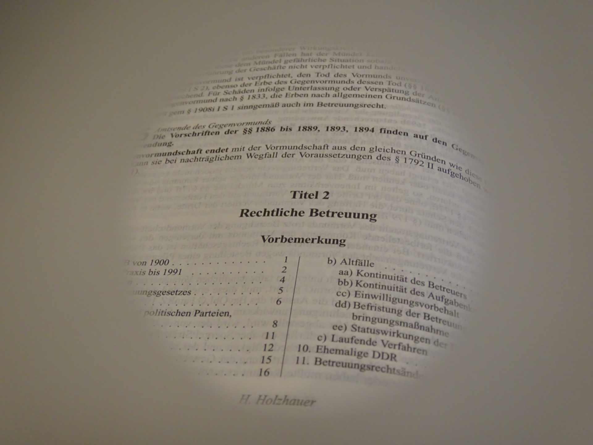 """Betreuung mit Einwilligungsvorbehalt für """"Rechtsangelegenheiten"""" - und die Prozessfähigkeit"""